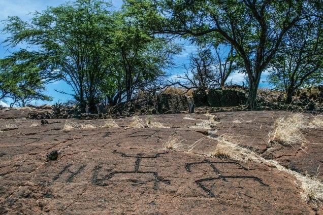Petroglyphs - Kona, Hawaii