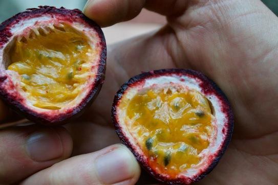 Maracuya - passion fruit